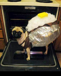 Very Clever Baked Potato Costume