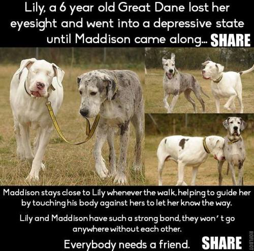 Lily and Maddison